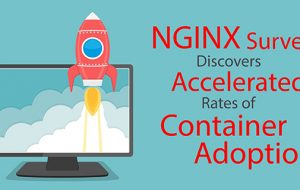 NGINX Survey Discovers Accelerated Rates of Container Adoption