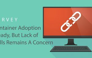 Survey: Container Adoption Steady, But Lack of Skills Remains A Concern