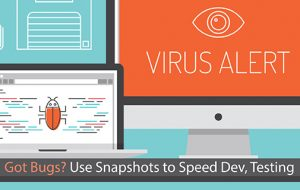 Got Bugs? Use Snapshots to Speed Dev, Testing