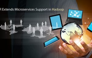 MapR Extends Microservices Support in Hadoop