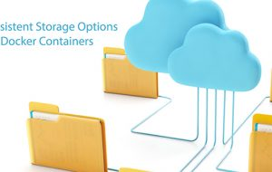 Persistent Storage Options for Docker Containers