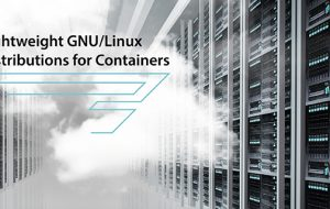 Lightweight GNU/Linux Distributions for Containers