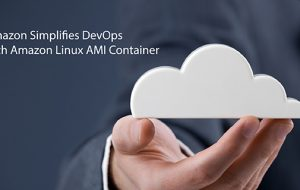 Amazon Simplifies DevOps with Amazon Linux AMI Container