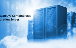 Software AG Containerizes Integration Server