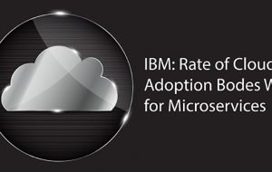 IBM: Rate of Cloud Adoption Bodes Well for Microservices