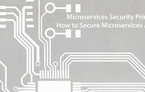 Microservices Security Primer: How to Secure Microservices APIs