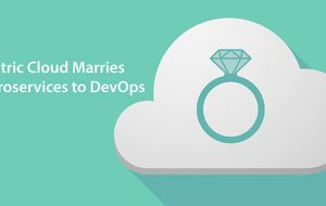 Electric Cloud Marries Microservices to DevOps