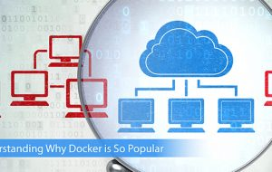 Understanding Why Docker is So Popular