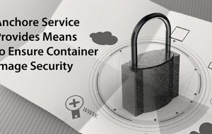 Anchore Service Provides Means to Ensure Container Image Security