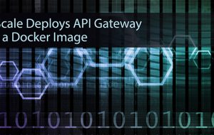 3Scale Deploys API Gateway as a Docker Image
