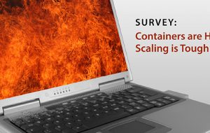 Survey: Containers are Hot, Scaling is Tough