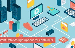 Persistent Data Storage Options for Containers