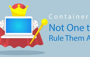 Containers: Not One to Rule Them All