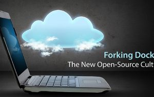 Forking Docker: The New Open-Source Culture