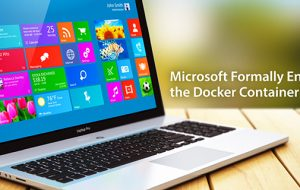 Microsoft Formally Enters the Docker Container Era