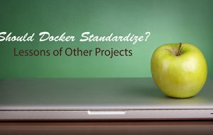 Should Docker Standardize? Lessons of Other Projects