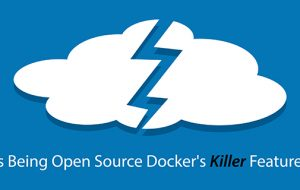 Is Being Open Source Docker's Killer Feature?