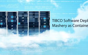 TIBCO Software Deploys Mashery as Container
