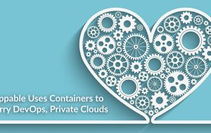 Shippable Uses Containers to Marry DevOps, Private Clouds