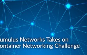 Cumulus Networks Takes on Container Networking Challenge