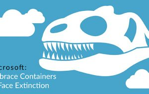 Microsoft: Embrace Containers or Face Extinction