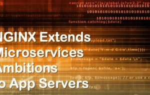 NGINX Extends Microservices Ambitions to App Servers