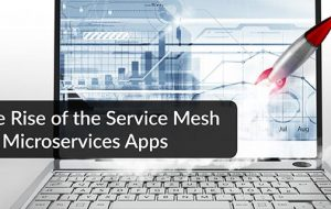 The Rise of the Service Mesh for Microservices Apps