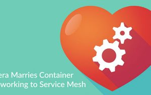 Tigera Marries Container Networking to Service Mesh