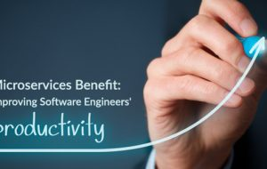 Microservices Benefit: Improving Software Engineers' Productivity